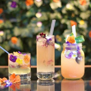 edible flower drinks